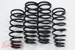 OE-Style Stock Replacement Springs: 2g DSM