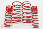 Lowering Springs: EVO 1-3